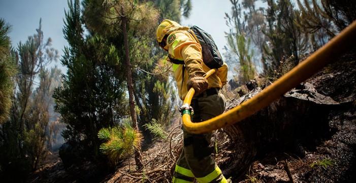 Dan por controlado el conato de incendio en los altos de La Orotava