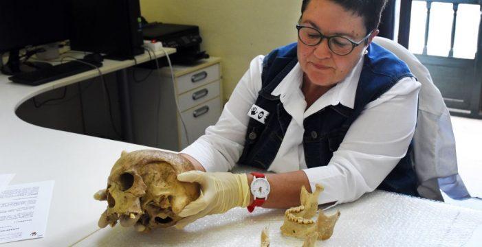 Donan al Museo Arqueológico un cráneo guanche 'olvidado' en una vivienda