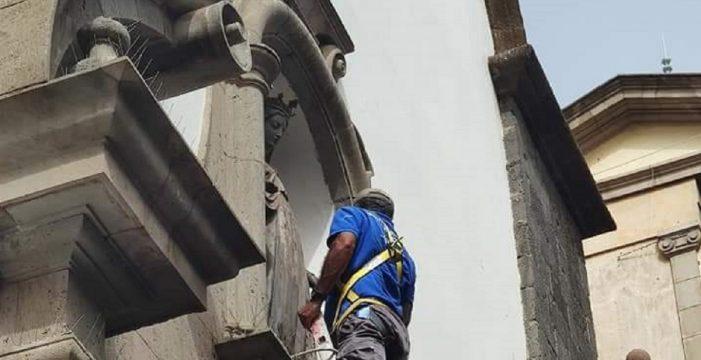 La iglesia de San Francisco, en Santa Cruz, se protege ante el ímpetu pernicioso de las palomas