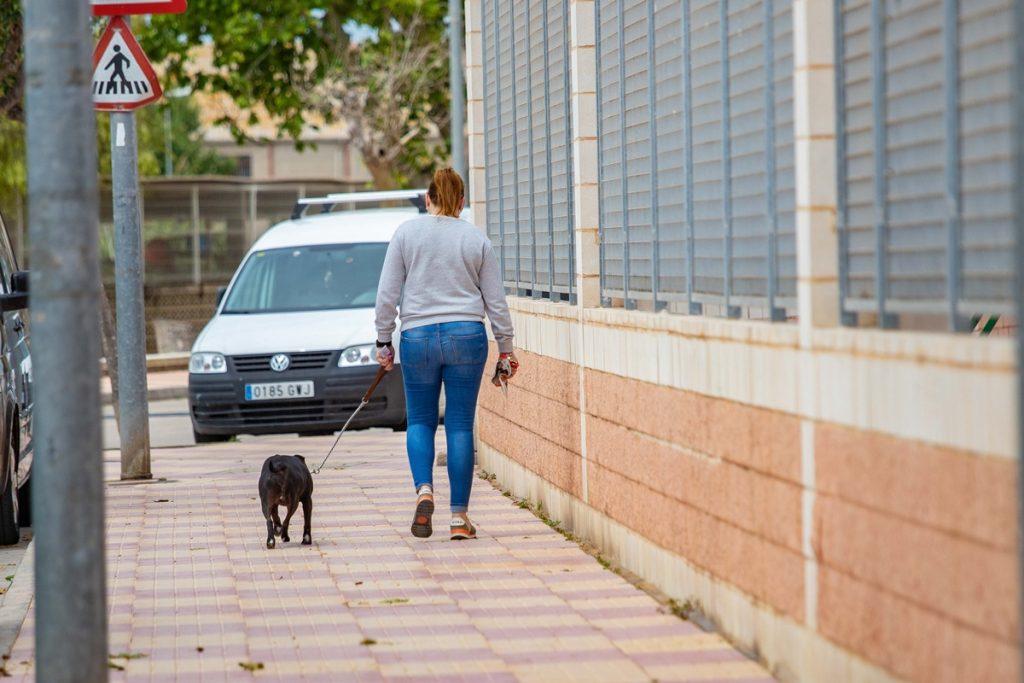 Una mujer pasea a su perro. EP