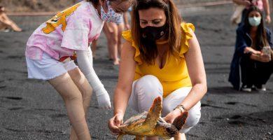 La magia de volver al mar: jornada de suelta de tortugas rescatadas y rehabilitadas en la playa de la Nea