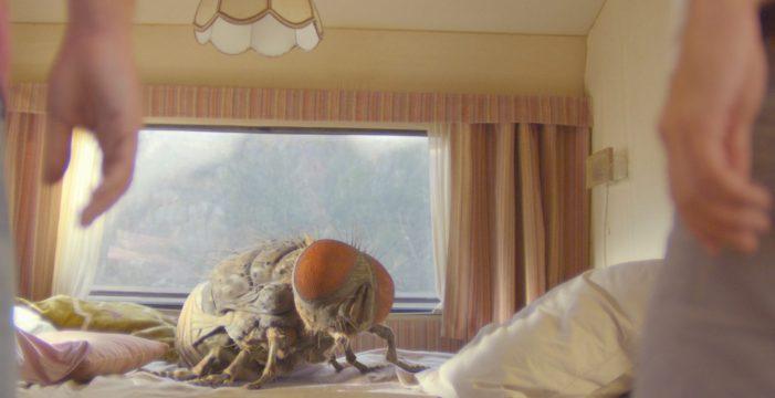 TEA proyecta desde hoy y hasta el domingo el film francés 'Mándibulas'