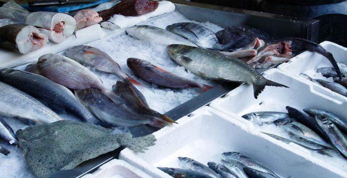 El pescado 'más sano' vale 1 euro: tiene más calcio que el yogur y protege el corazón