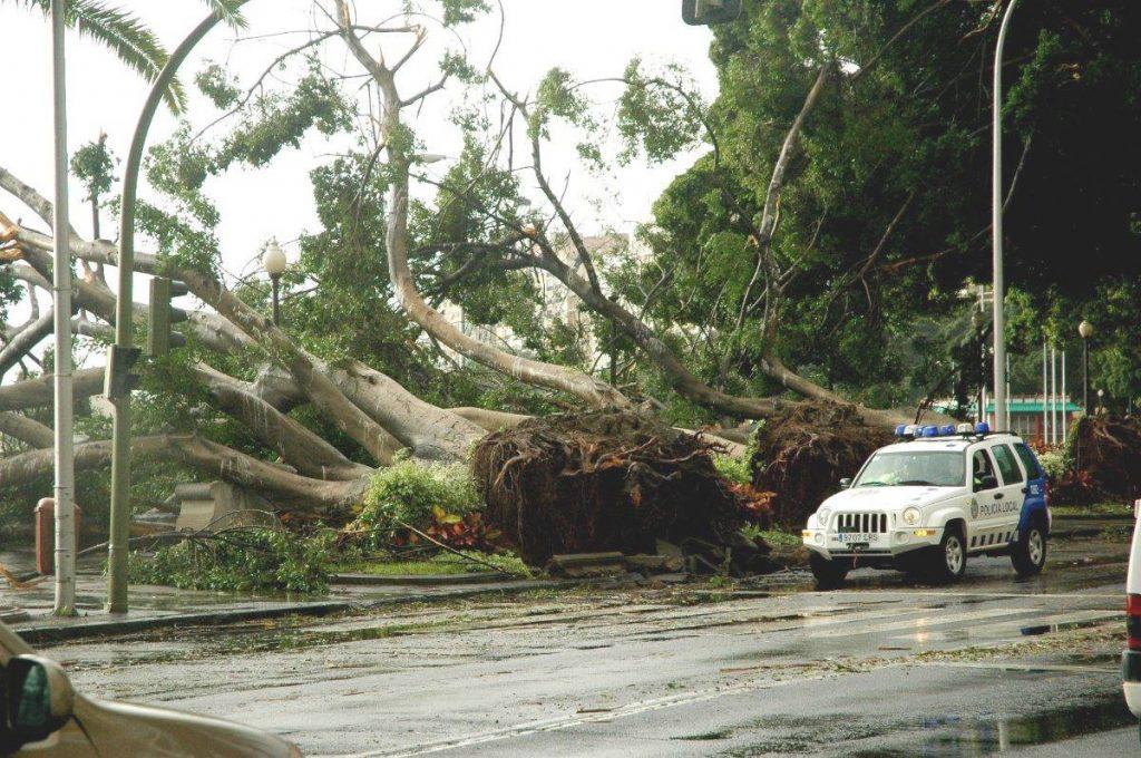 tormenta tropical Delta