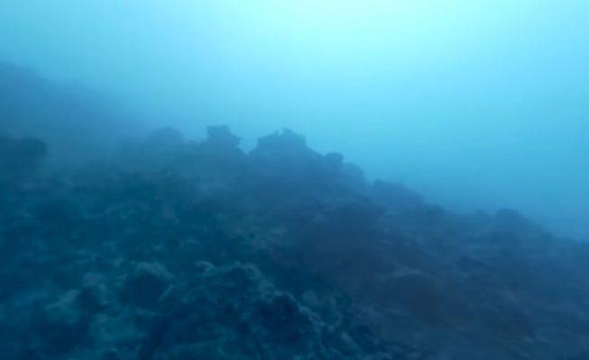 Primeras imágenes submarinas del delta lávico en La Palma