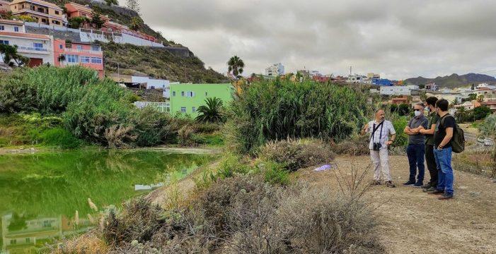 Achacan a un brote de botulismo la muerte de aves en La Laguna
