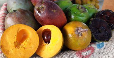 Concurso con frutas tropicales de Tenerife, en Gastronomika
