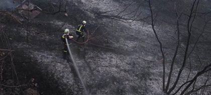 Dan por controlado el conato de incendio declarado en Adeje