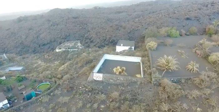 Un comando denominado 'Equipo A' se atribuye el rescate de los perros de La Palma