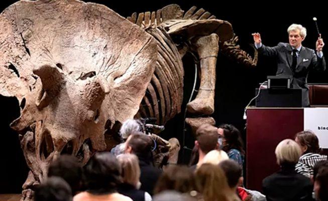 Subastado el esqueleto de 'Big John', uno de los últimos dinosaurios antes de su extinción